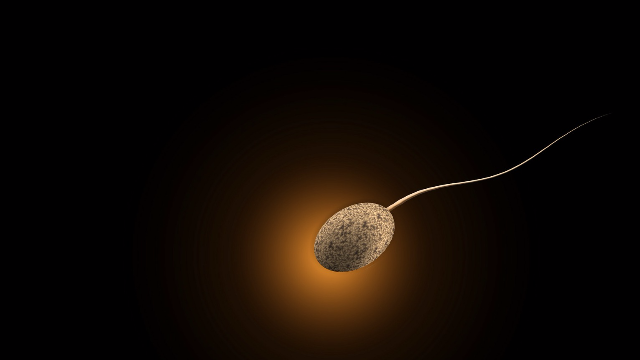 Secret of Sperm's 'Bendy' Tail Revealed