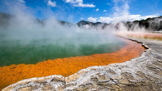 Secret to How Microbes Survive in Extreme Conditions