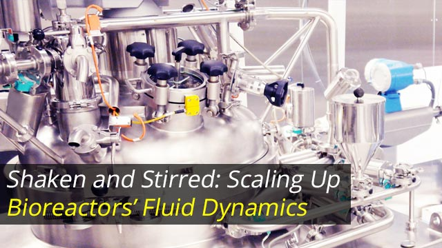 Shaken and Stirred: Scaling Up Bioreactors' Fluid Dynamics