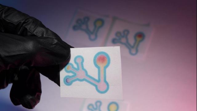 Simple Paper Test Detects False or Substandard Antibiotics