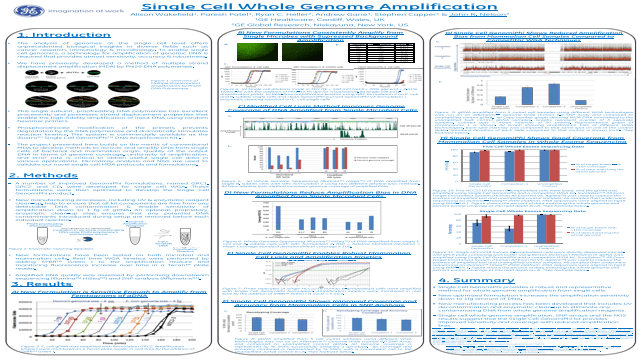 Single Cell Whole Genome Amplification