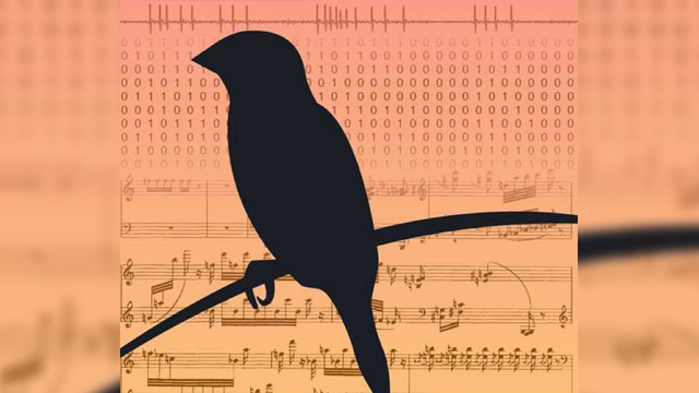 Songbird Data Yields New Theory for Learning Sensorimotor Skills