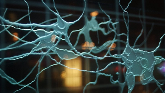 New devices created that emulate human biological synapses