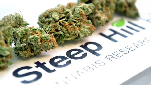 Steep Hill, Eybna Partner to Commercialize Customized Cannabis Terpene Products