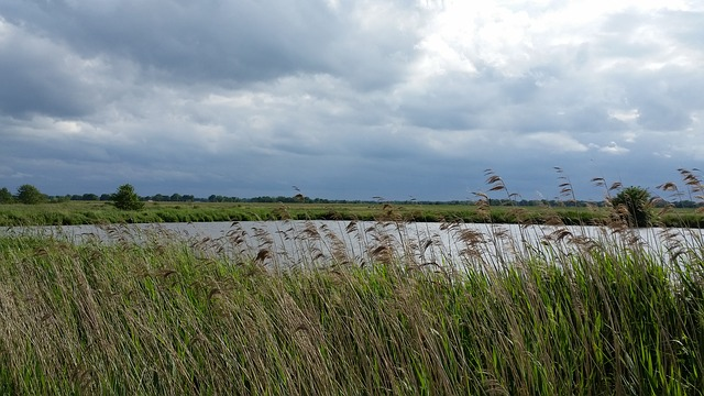 Stormwater Ponds Not a Significant Source of Climate-Warming N<sub>2</sub>O