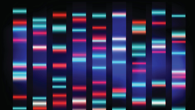 Streaming Protocol Makes Gene Data Sharing Future-Proof
