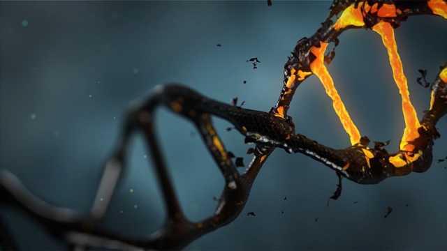 Study Indicates 75% of Human Genome is Non-functional