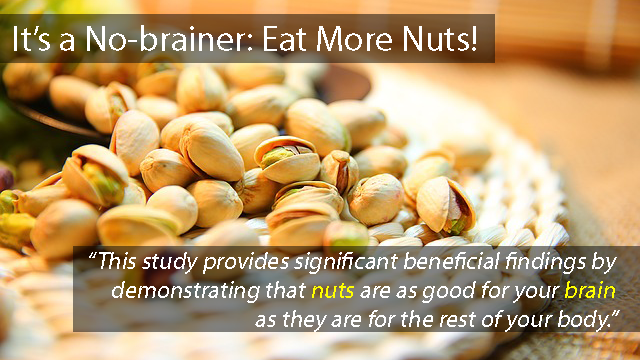 Study Shows Consuming Nuts Strengthens Brainwave Function