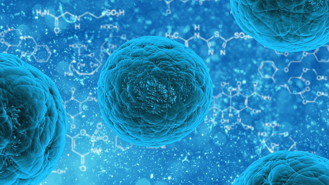Study Strengthens Genetic Link Between Stem Cells and Cancer
