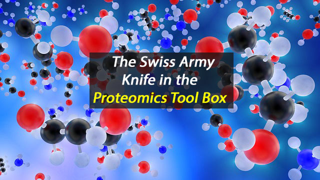 Swiss Army Knife of Protein Interactions