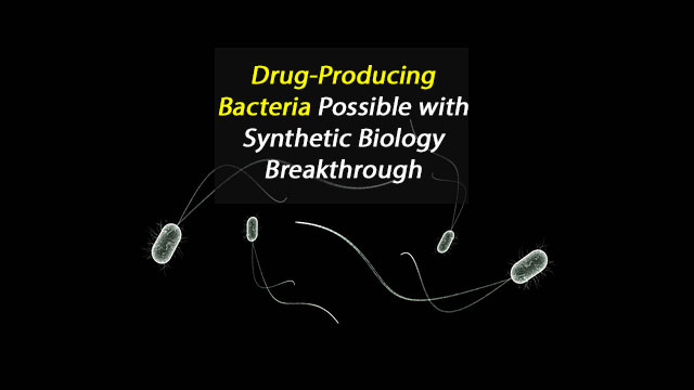 Synthetic Biology Breakthrough Means Bacteria Could Produce Our Essential Drugs