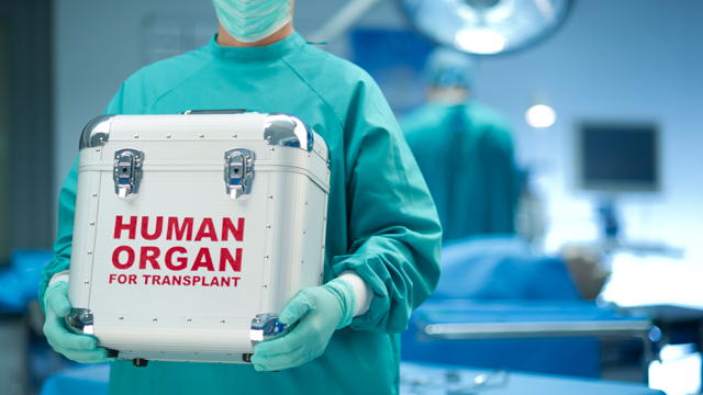 Targeted Drug Delivery Via Nanoparticles Could Help Repair Transplant Organs