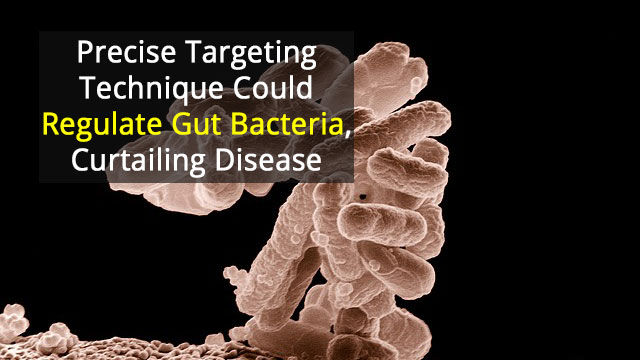 Targeting Gut Bacteria to Reduce Disease