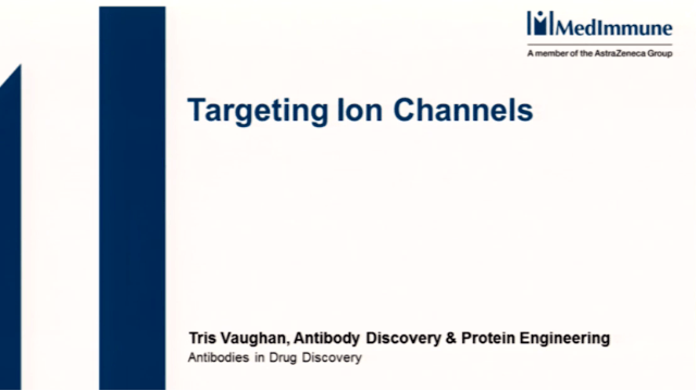 Targeting Ion Channels With Antibody Therapeutics