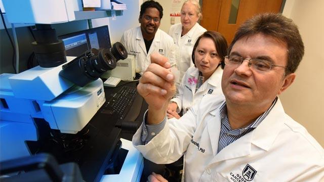Targeting Receptor Could Prevent Progression of Liver Damage to Cancer