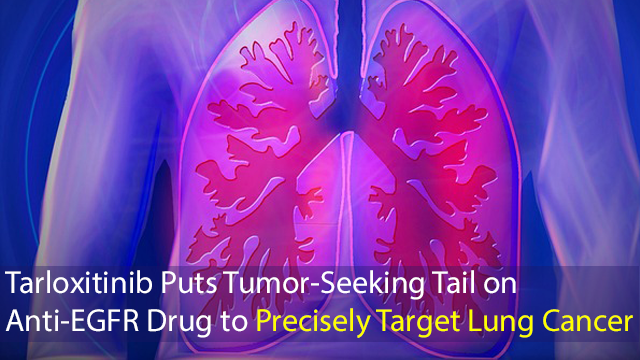 Tarloxitinib Puts Tumor-Seeking Tail on Anti-EGFR Drug to Precisely Target Lung Cancer