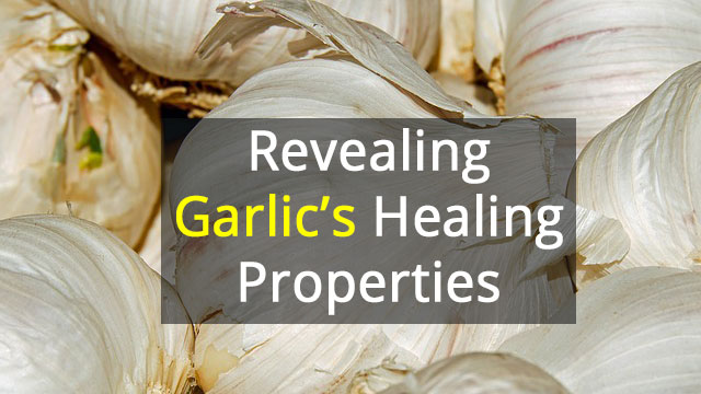 The Complicated Biology of Garlic