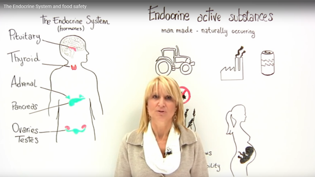 The Endocrine System and Food Safety