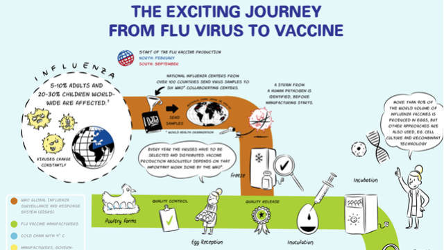 The Exciting Journey from Flu Virus to Vaccine