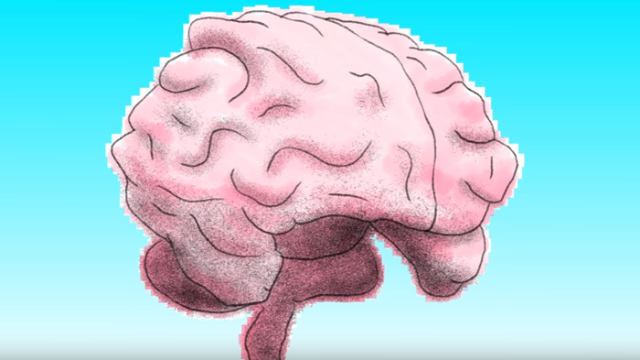 The left brain vs. right brain myth