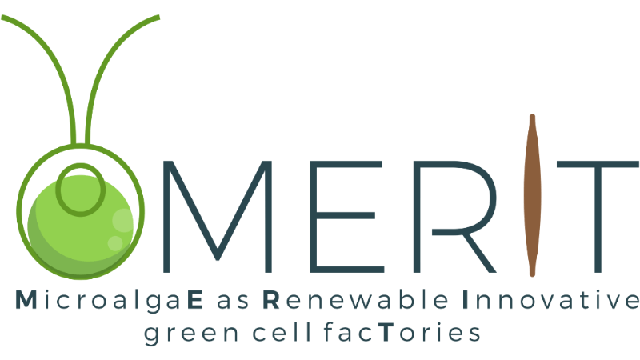The MERIT of Working with Microalgae