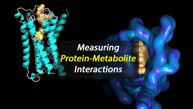 "The New ""Omics"" - Measuring Molecular Interactions"