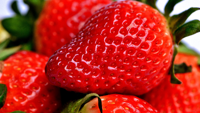 The Sex Life of Strawberries