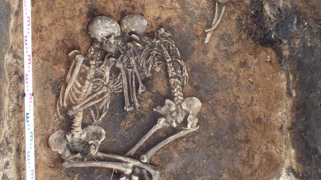 The World's Oldest Bubonic Plague Bacteria Have Been Sequenced