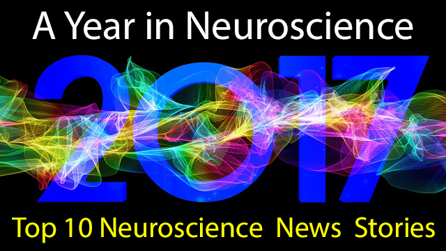 Top 10 Neuroscience News Stories of 2017