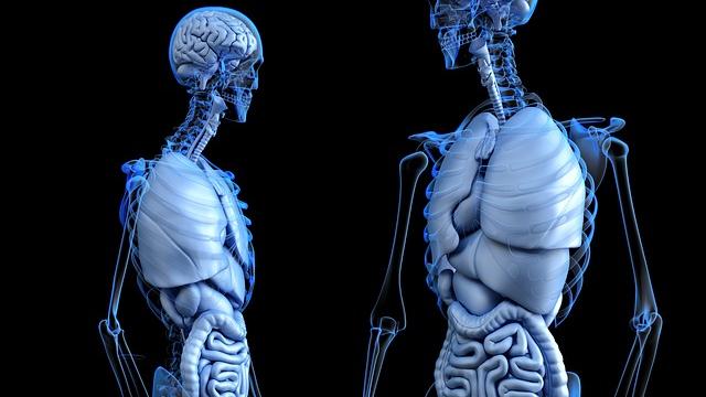 Tracking Gut-derived Metabolites
