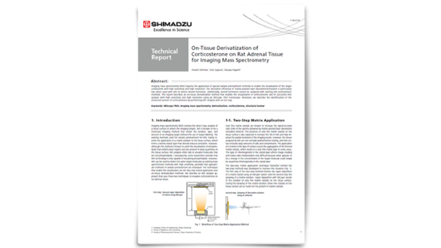 Transforming Imaging Mass Spectrometry with On-Tissue Derivatization