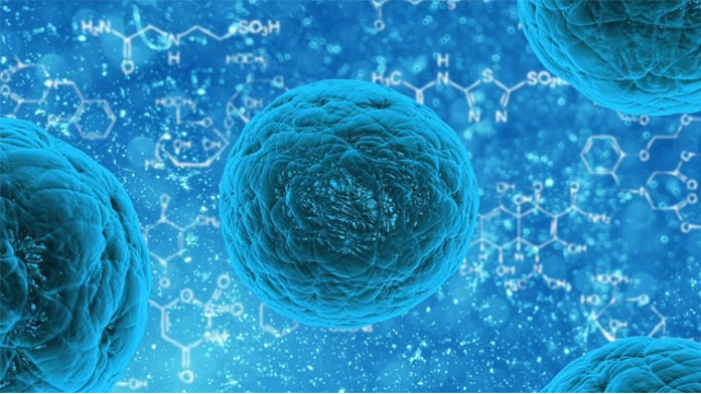 UC San Diego Researchers Receive Funding to Pursue Novel Stem Cell-based Treatments