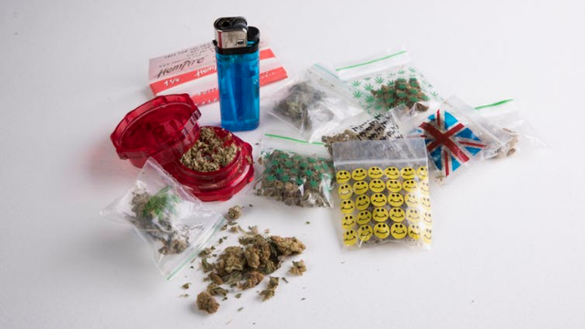 UK Cannabis Potency Study Highlights Failings of the War on Drugs