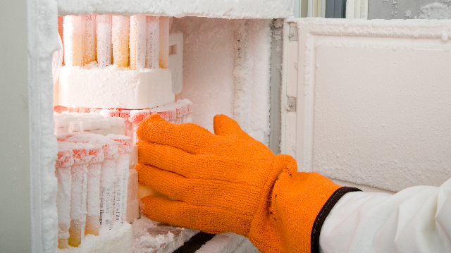 Ultra-Low Freezer Survey Results: Needs, Problems & Purchasing Considerations