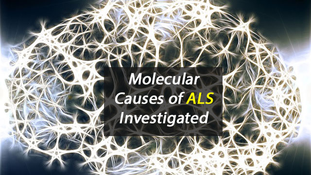 Understanding 'Disease Mechanisms' of ALS