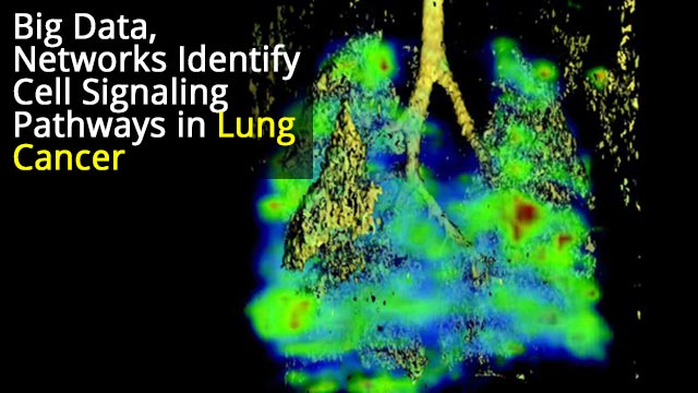 Understanding Lung Cancer Cell Networks Helps Create Drug Treatments