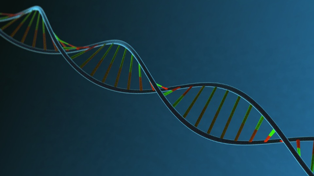 Unexpected Findings Uncover New Understanding of Gene Expression