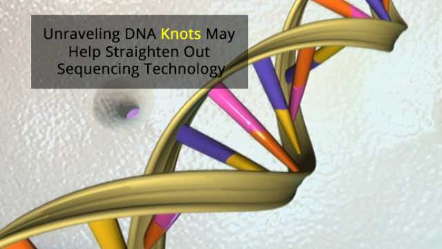 Untying the Knots in DNA