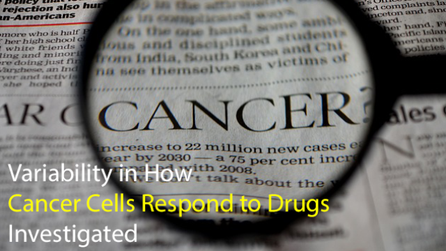Variability in How Cancer Cells Respond to Drugs Investigated