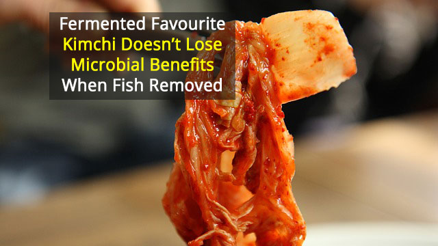 "Vegan and Traditional Kimchi Have Same ""Probiotic"" Microbes"