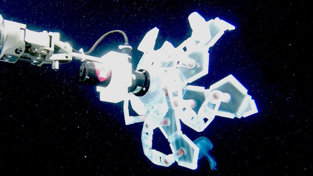 "Watch the Wyss Institute's ""Poké Ball"" RAD Sampler Capture Ocean Life"
