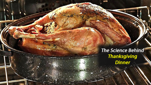 White Meat or Dark Meat? Serving Up Big Data to Decipher Thanksgiving Dinner