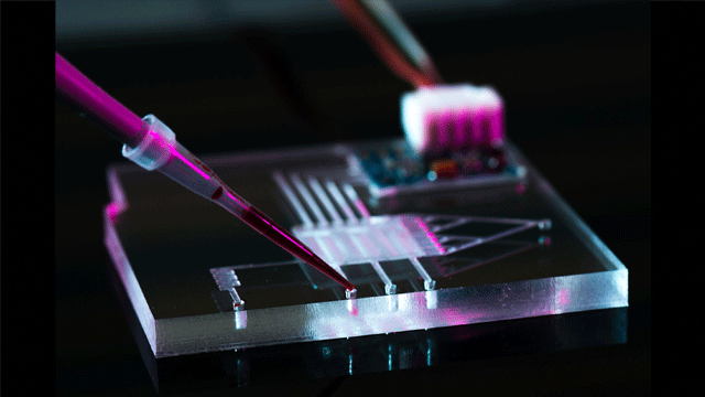 Why is China Becoming a Microfluidics Manufacturing Superpower?