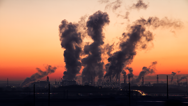 Why Polluted Air May Threaten Your Kidneys