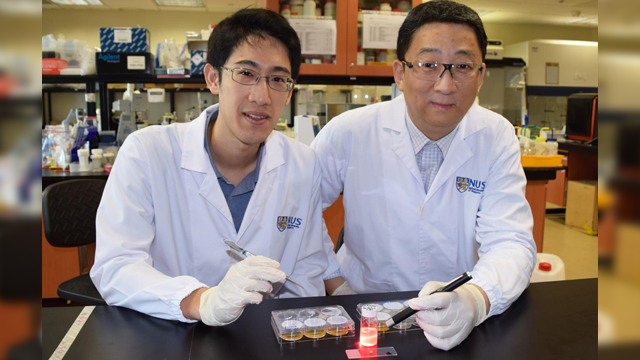 Wireless Light Switch for Targeted Cancer Therapy
