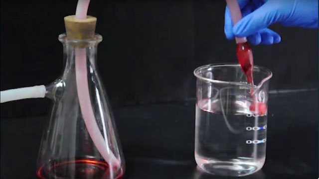 Wood Sponges that Soak Up Oil