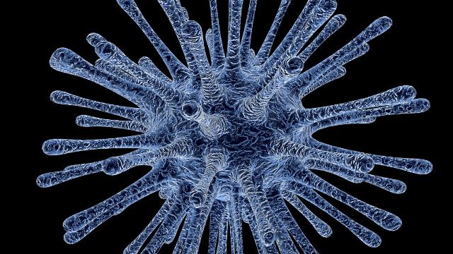 Yisheng's PIKA Rabies Vaccine gets FDA Orphan Drug Designation