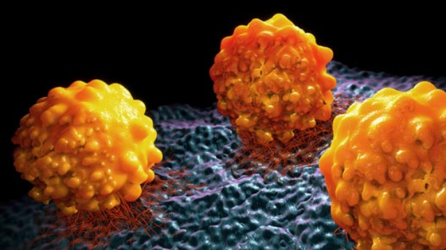 Zzzzz... Putting Cancer Cells to Sleep