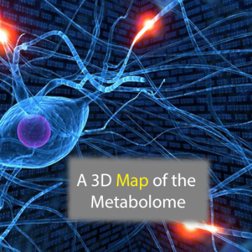 3D Metabolic Map is Computational First