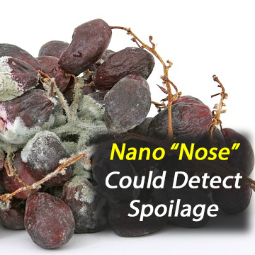 Bioelectronic 'Nose' Can Detect Food Spoilage by Sensing the Smell of Death